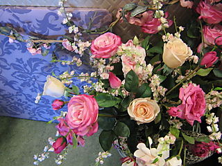 Lillycottage roses today 021