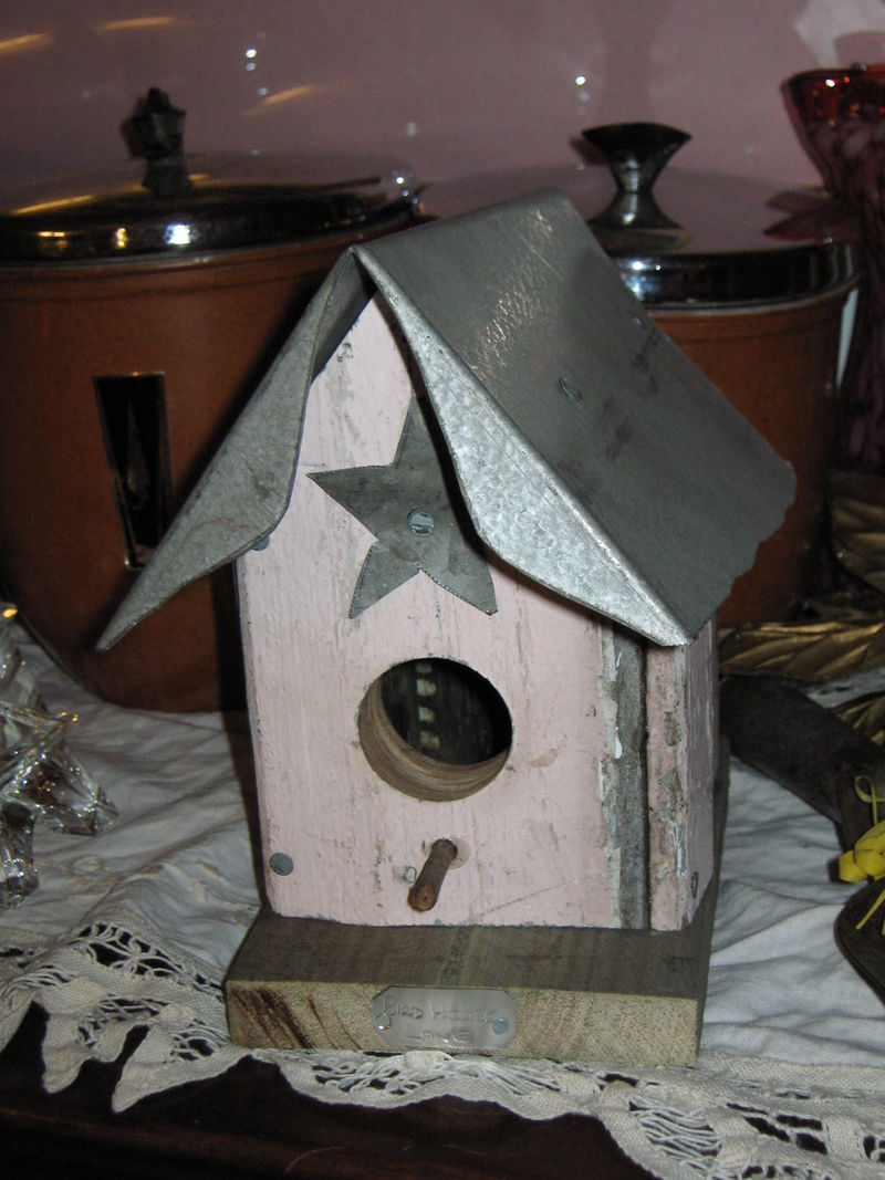 Christmas morning 2008 013