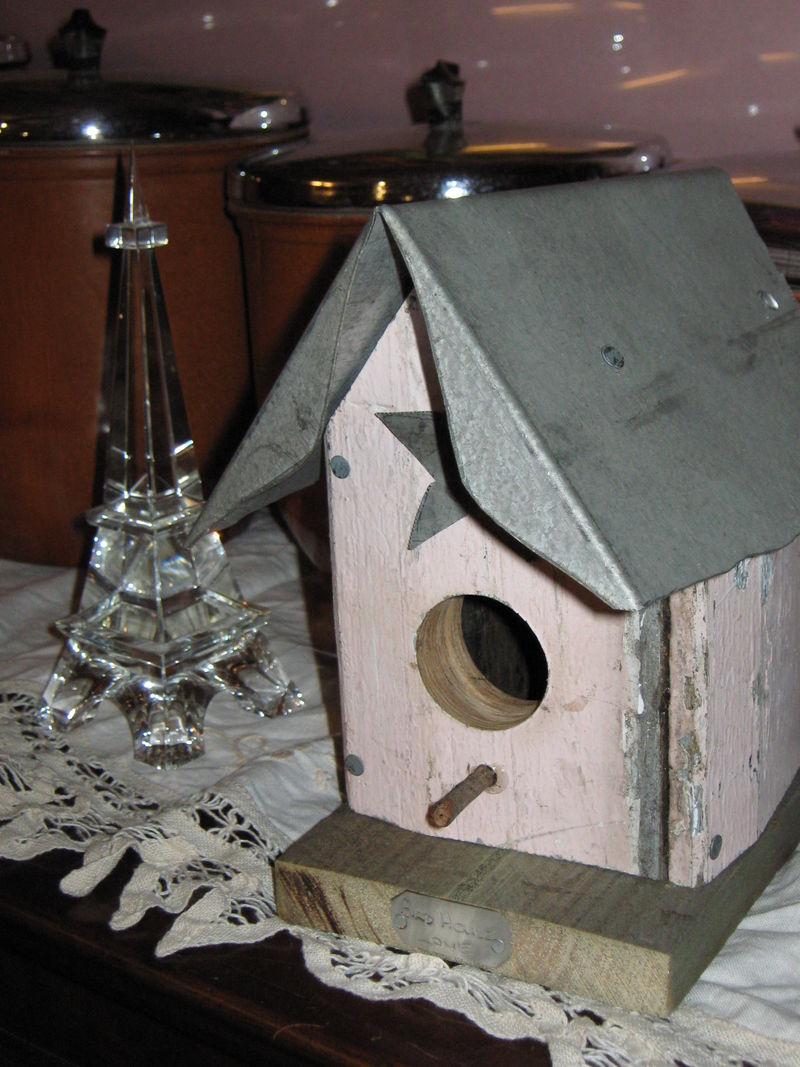 Christmas morning 2008 014