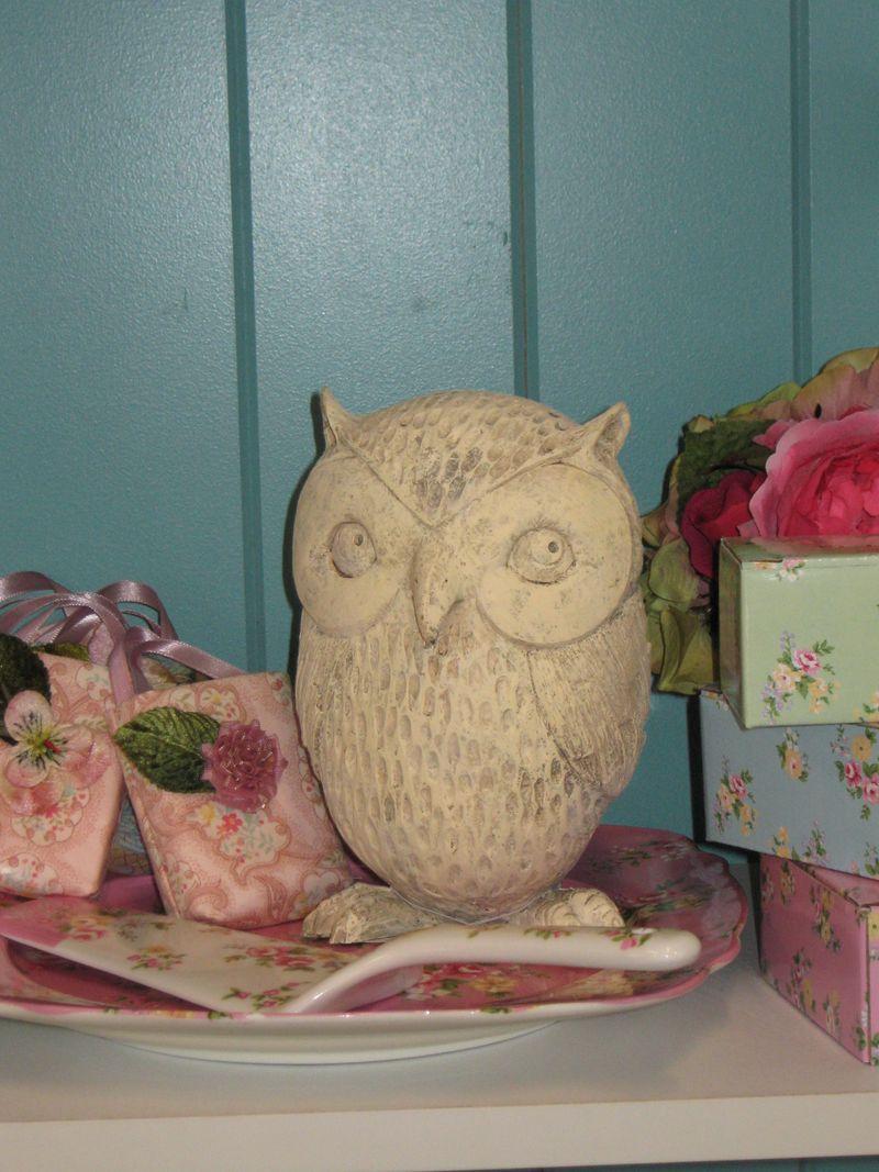 Owl 030