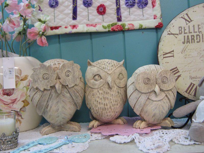 Owl 025