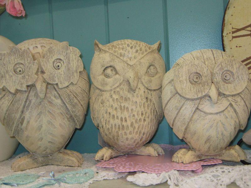 Owl 026
