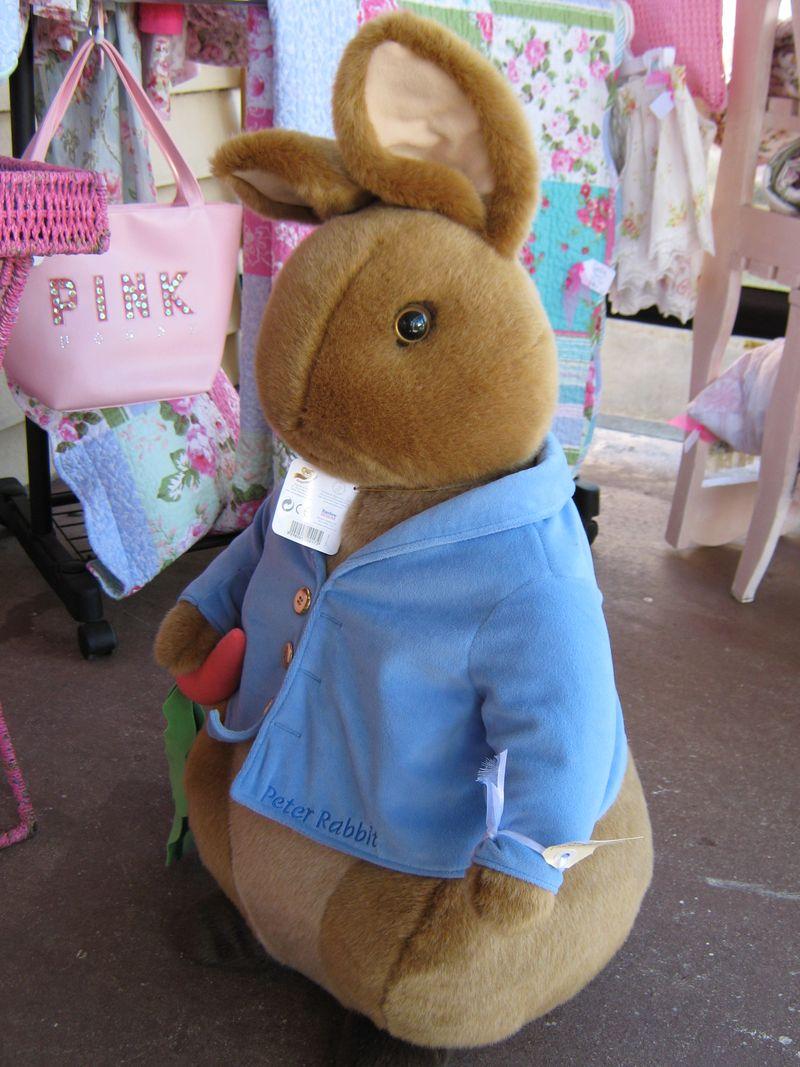 Peter Rabbit 037