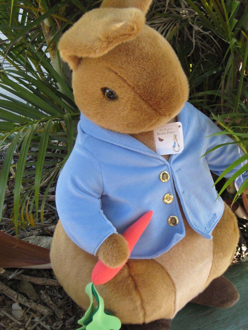 Peter Rabbit 034