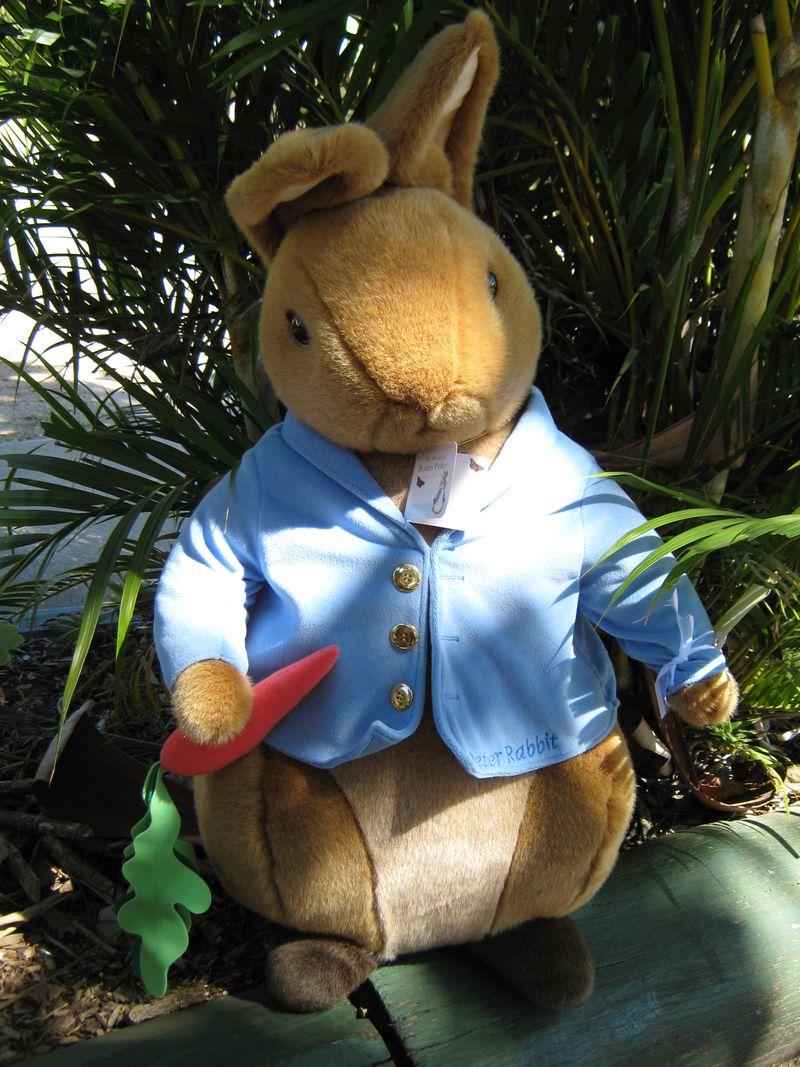 Peter Rabbit 032