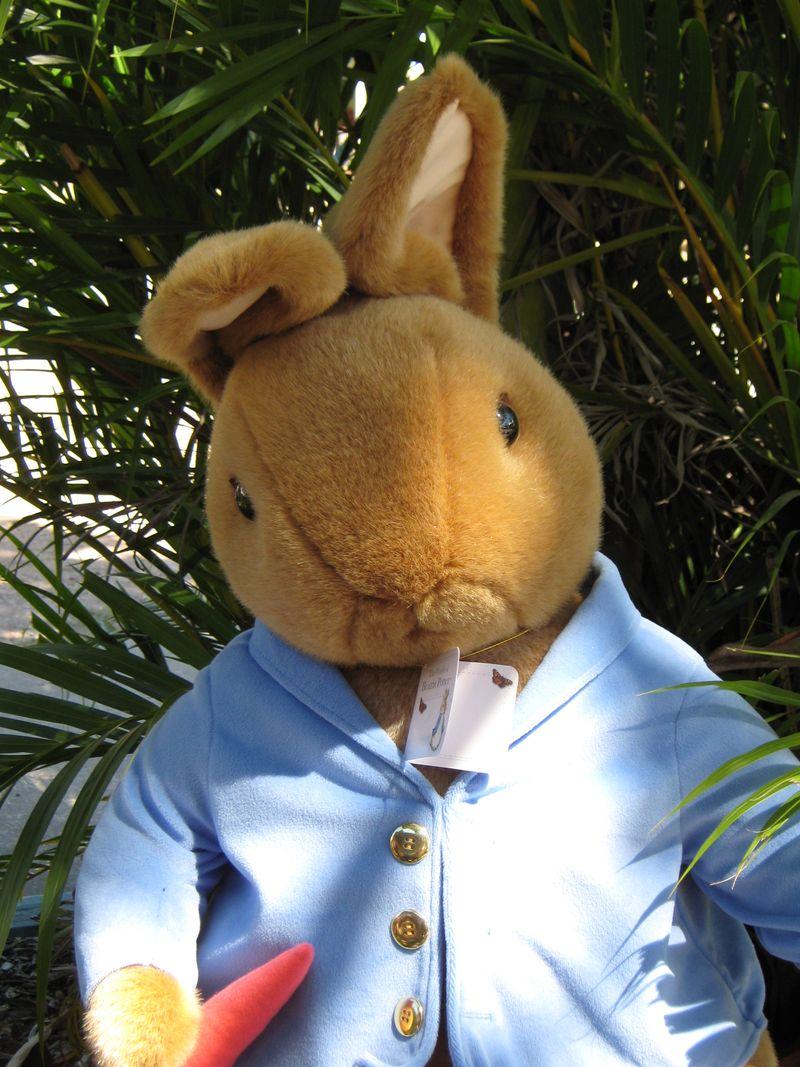 Peter Rabbit 030