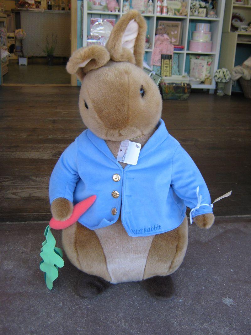 Peter Rabbit 036