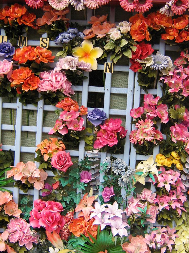 Bribie flowers birthday 017