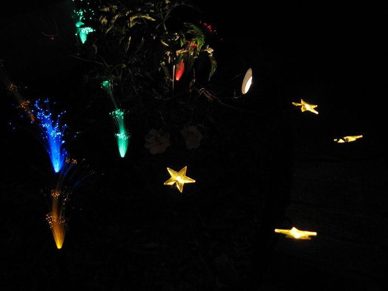 Lights lights lights 018