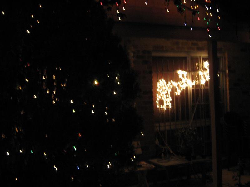 Lights lights lights 021