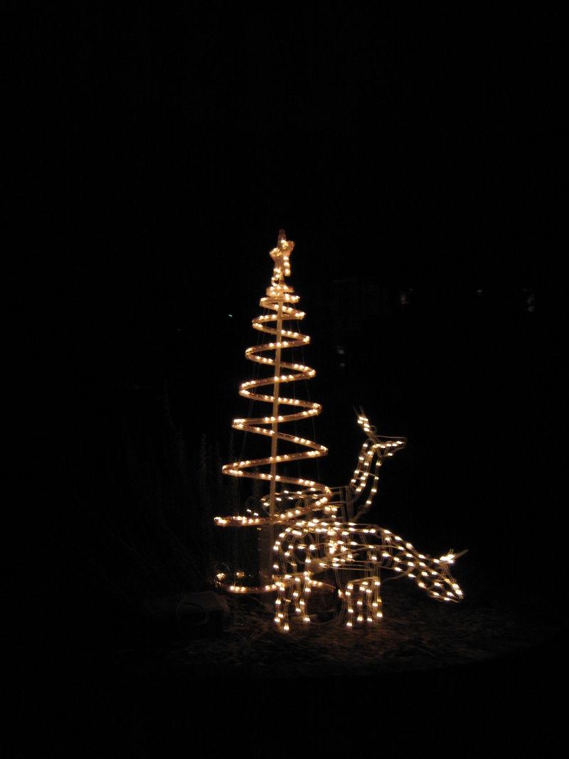 Lights lights lights 022