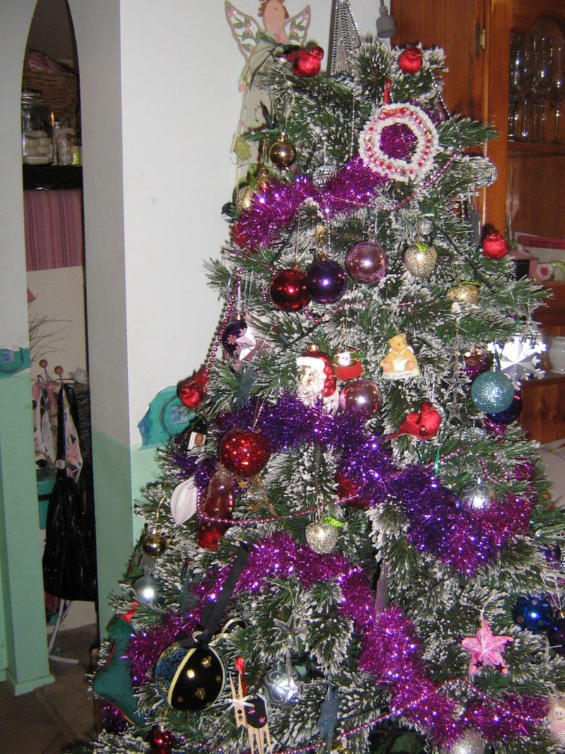 La luna and shabby annie 009