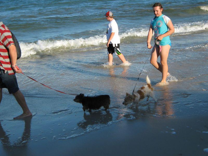 More beach 015