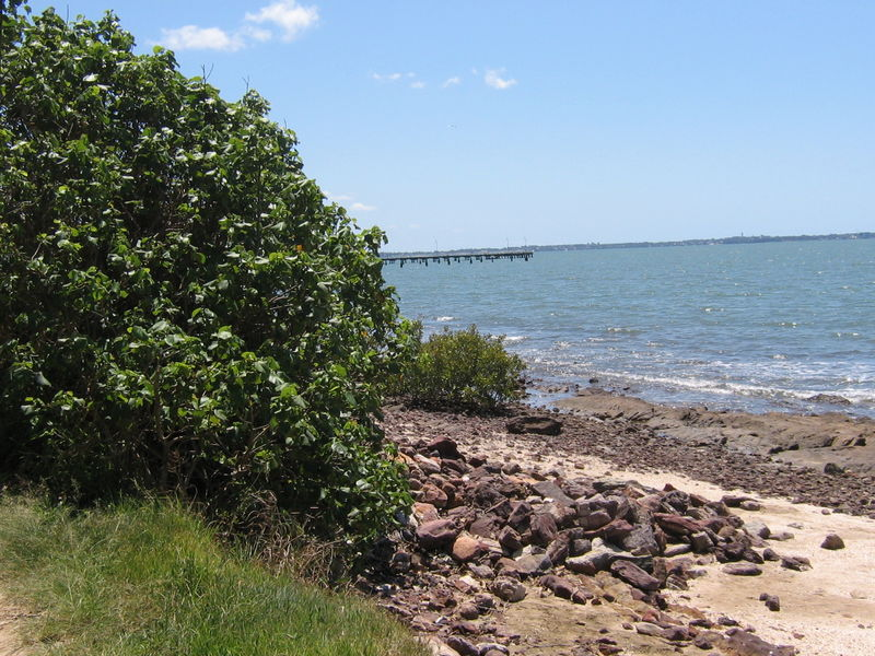 Sunny Shorncliffe 021