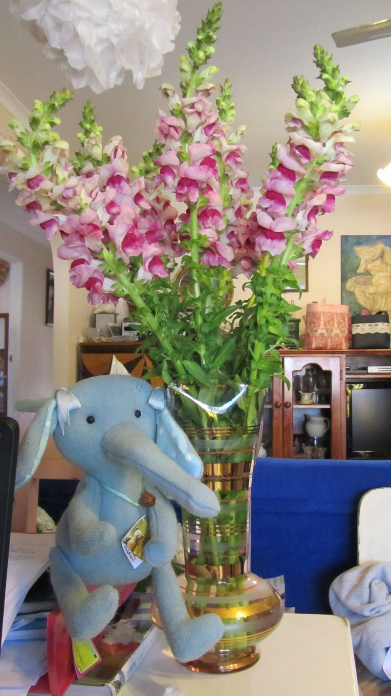 Elephants and snapdragons 3