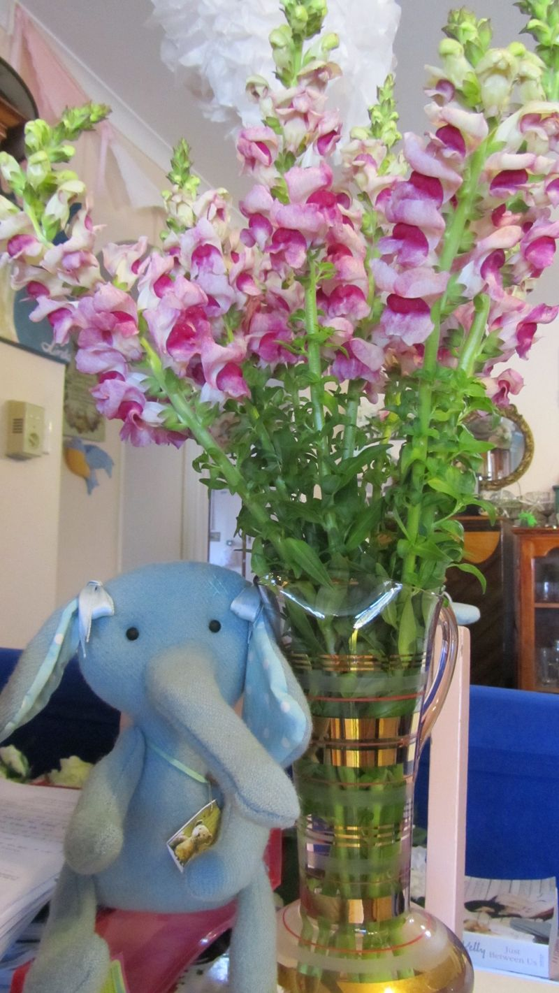 Elephants and snapdragons5