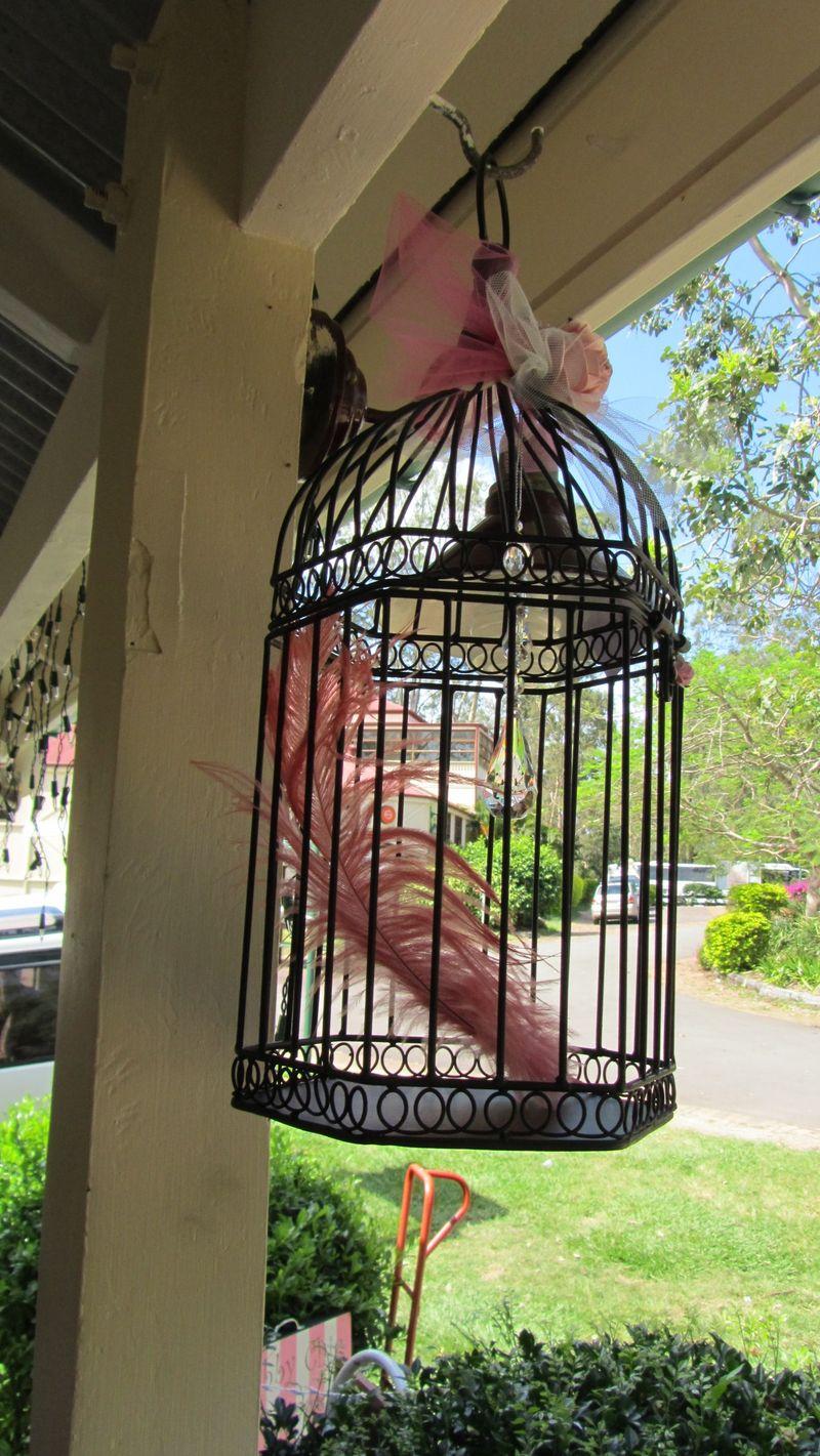 Caged 015 (1216 x 2160)