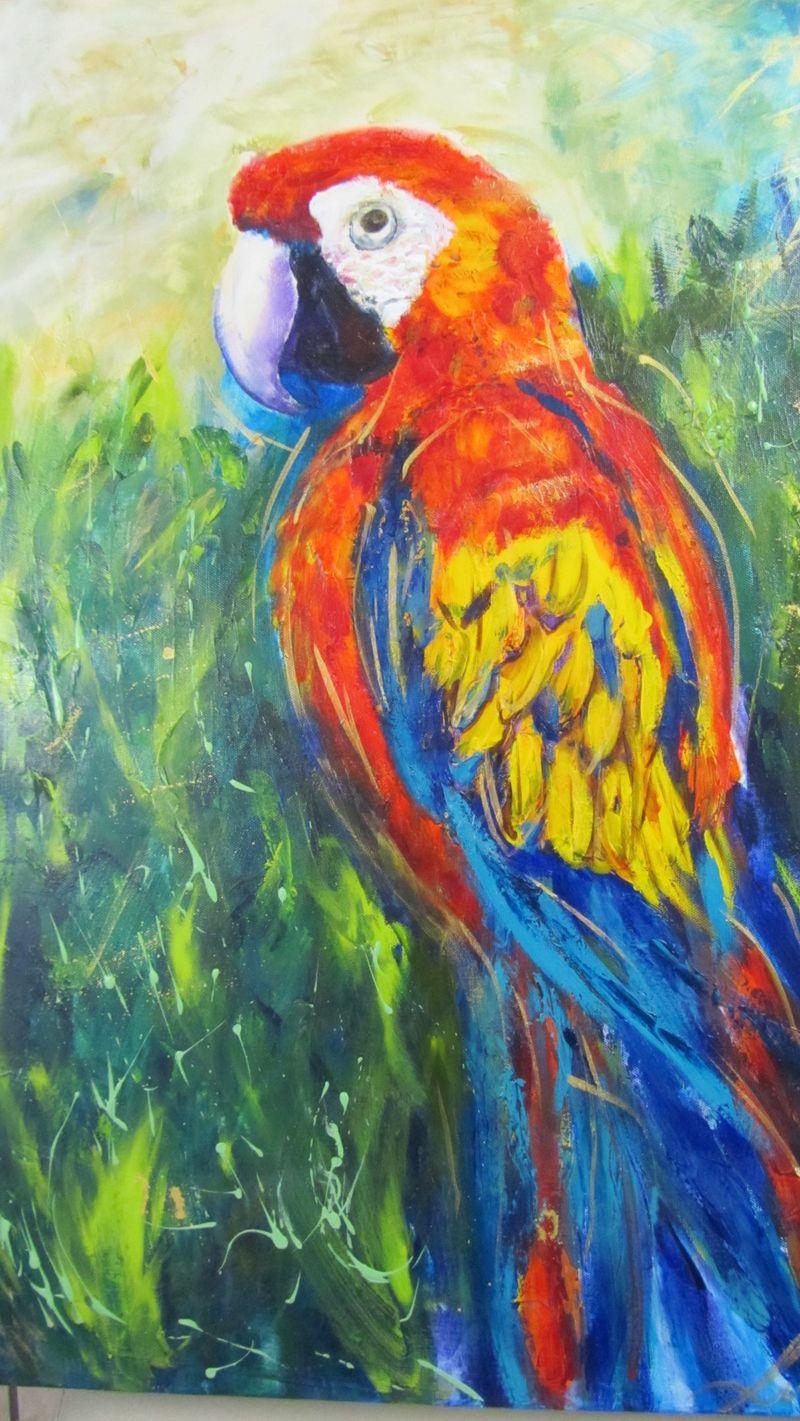 Macaw 046 (1216 x 2160)