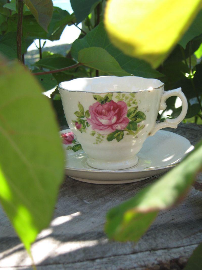 Beach tea 137 (1152 x 1536)
