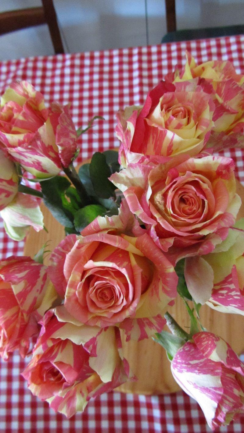 Rose 008 (1216 x 2160)